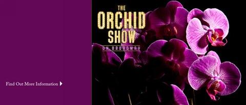 Шоу Орхидей
