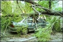 Мощный ураган пронёсся над Литвой